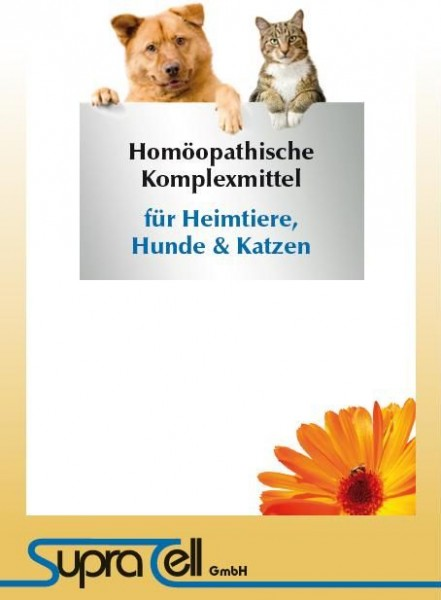 Broschüre Hund/Katze Serie
