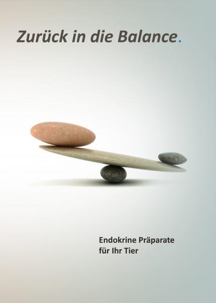 """Flyer zur Serie """"Endokrine Präparate für Ihr Tier"""""""