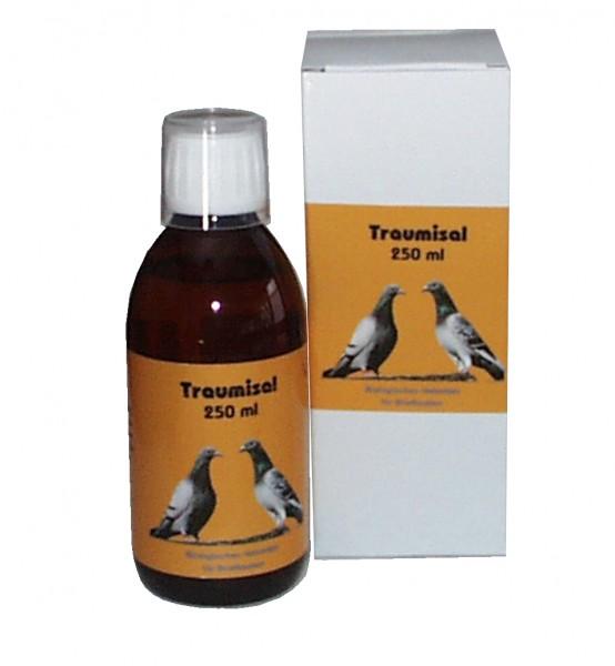 Traumisal - 250 ml Lösung