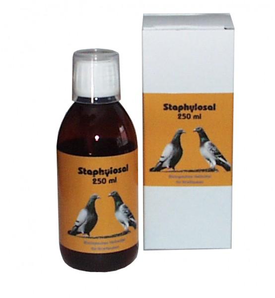 Staphylosal - 250 ml Lösung